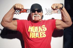 Hulk Hogan, modern