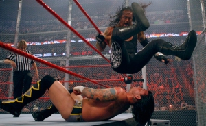 CM Punk, The Undertaker, WWE Hell in a Cell 2009