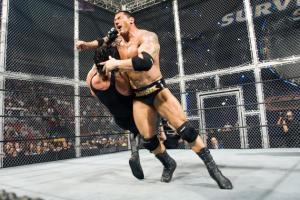 Undertaker, Batista, Hell in a Cell, Survivor Series 2007