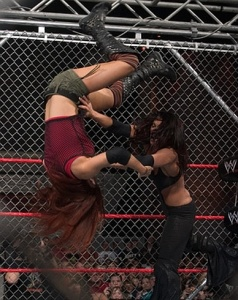 Lita vs. Victoria, steel cage match