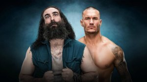 luke-harper-randy-orton-wwe-elimination-chamber-2017