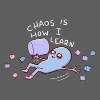 chaos is how i learn